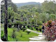 Roberto Burle Max Gardens
