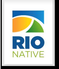 Rio Native
