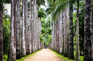 Top 5 Rio de Janeiro Best Tours